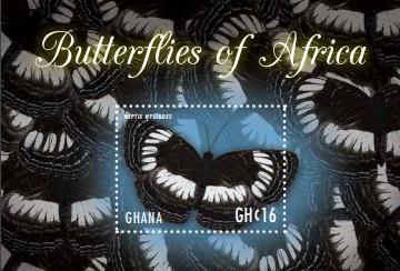 Ghana Butterfly